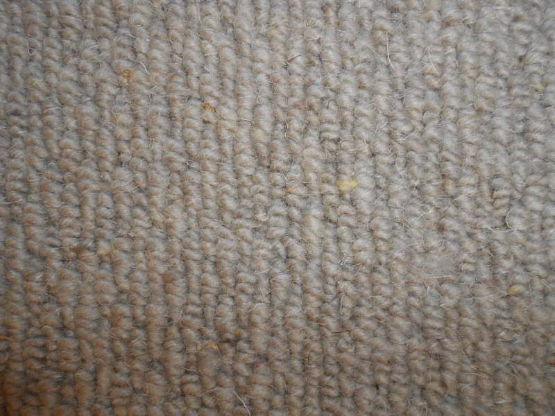 wool carpet made natural sheep texture
